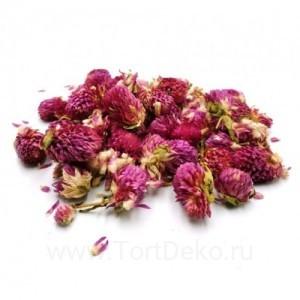 Гофмена, цветы сушеные, 15 г (сухоцвет)