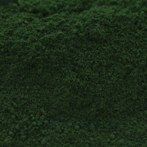 "Краситель пыльца цветочная ""Зеленый лес"", (4 г)"