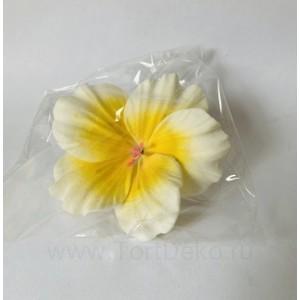 "Сахарный цветок ""Гибискус"""