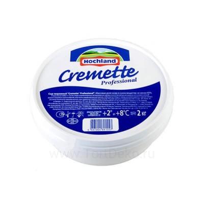 """Сыр """"Cremette Professional"""" творожный 65%, (2 кг)"""